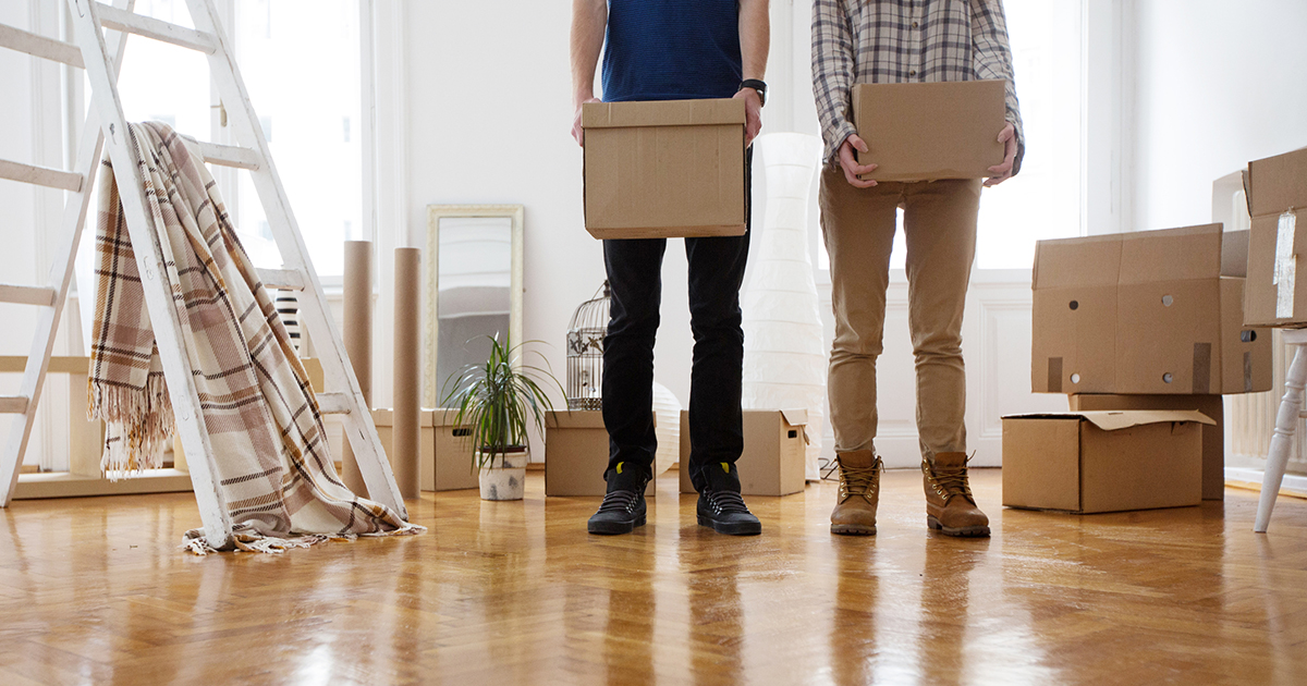 Find Everything You Need to Know about Landlord or Tenant